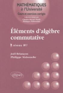 Eléments d'algèbre commutative - Niveau M1