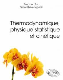 Thermodynamique, physique statistique et cinétique