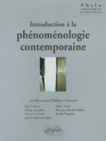 Introduction à la phénoménologie contemporaine