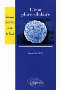 L'état pluricellulaire