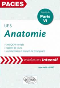 UE5 - Anatomie