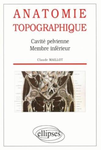 Anatomie topographique - Cavité pelvienne - Membre inférieur